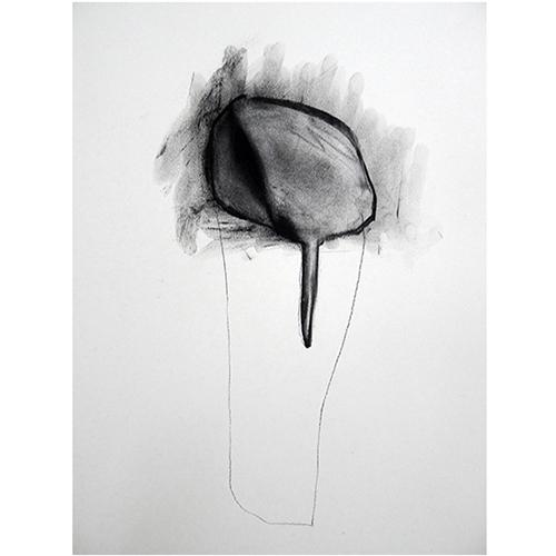 NachtschattenKohle auf Papier70 cm  x 100 cm2013